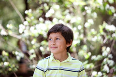 Boy in the forest series Royalty Free Stock Photography