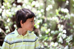 Boy in the forest series Stock Photo