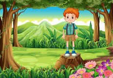 A boy at the forest standing above the stump Royalty Free Stock Photography
