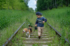 Boy, four years old walking with a Beagle. Boy, four years old walks on a leash with a Beagle dog on the sleepers of the railway Stock Photo