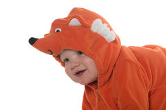 Boy in fox costume Royalty Free Stock Image