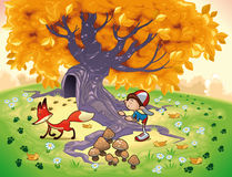 Boy and Fox in the wood. Funny cartoon and vector illustration Stock Images