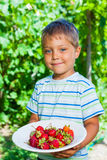 Boy with fresh strawberries Royalty Free Stock Photography