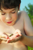 Boy with a frog. Young boy holding a tiny green frog in his hands royalty free stock photo
