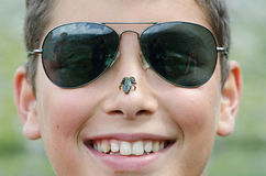 Boy with frog on nose Stock Photography