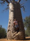 Boy in front of Baobab tree stock photography