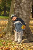 Boy in front of tree Stock Image