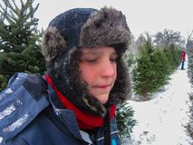 Young boy at Christmas tree farm in winter Royalty Free Stock Images