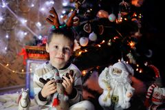 The boy and a fur-tree Stock Photos