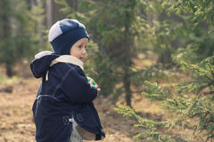 The boy in a fur-tree wood (1) Stock Photo
