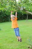 Boy in the garden Royalty Free Stock Photography
