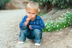 Boy in the garden Royalty Free Stock Images