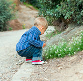 Boy in the garden Stock Images