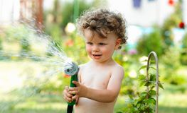 Boy in  garden. Baby boy in a garden Royalty Free Stock Image