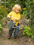 Boy in the garden. Little blond haired boy pouring water out of a ewer on salad plants Stock Photography