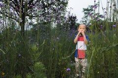 Boy garden Royalty Free Stock Image