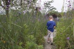 sad boy walking in garden Stock Photography
