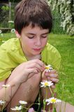 Boy in garden with flowers Stock Photo
