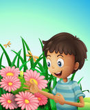 A boy in the garden with flowers and dragonflies Stock Photography