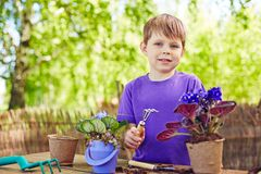Boy with garden tool Stock Image