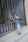 Boy and the gate Stock Image