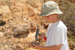 Boy Geology Student. Young boy studying geology out in the field Royalty Free Stock Image