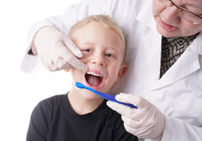 Boy gets help by the Dentist to brush his teeth Stock Photos