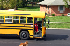 Boy Getting off School Bus Stock Photos