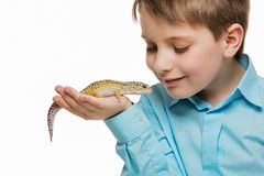 Boy with gicon Royalty Free Stock Image