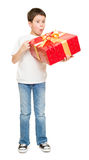 Boy with gift box Royalty Free Stock Photography