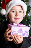 Boy with gift under the Christmas tree Stock Photos