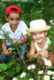Boy and girl. Girl and boy sit in bush colour Stock Images