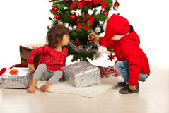 Boy and girl arrange Christmas tree Stock Image