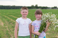 Boy and girl with a bouquet of daisies Stock Photos