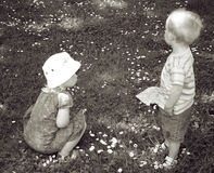 Boy and girl children. Boy and a girl on grass field or in garden amongst flowers. Picking flower Stock Photo