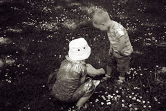 Boy and girl children pick flower. Boy and girl in grass field or garden playing among flowers. Picking flowers stock image