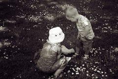 Boy and girl children pick flower Stock Image