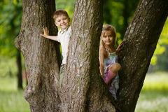 Boy and girl climb big tree Royalty Free Stock Photos