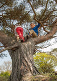 Boy and girl climbing in a tree Stock Image