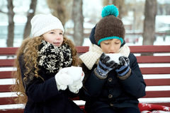 Boy with girl drink coffee together in the winter on a bench in Stock Photos