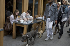 Boy and girl drinking coffee at a table in an outdoor cafe. People pass with the dog Stock Images