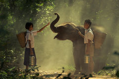 Boy and girl with elephant Stock Photos
