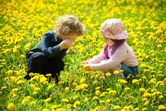 Boy and girl in flowers Stock Image