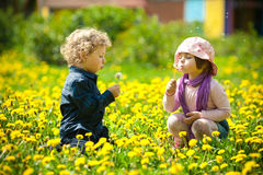 Boy and girl in flowers Stock Photos