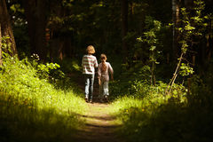 Boy with a girl go through the woods Stock Images