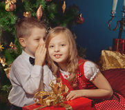 Boy and girl having conversation near Christmas tree Royalty Free Stock Images