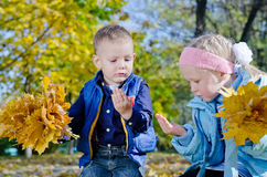 Boy and Girl Holding Autumn Leaves Royalty Free Stock Photos