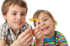 Boy and girl holding lollipops ,looking on it Stock Photo