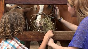 Boy And Girl At Horse Farm stock video