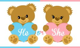 Cute vector character illustration. Teddy bear holding blue and pink heart. Gender reveal party. Boy or girl? Invitation template card. Birth child. Baby shower Stock Photography